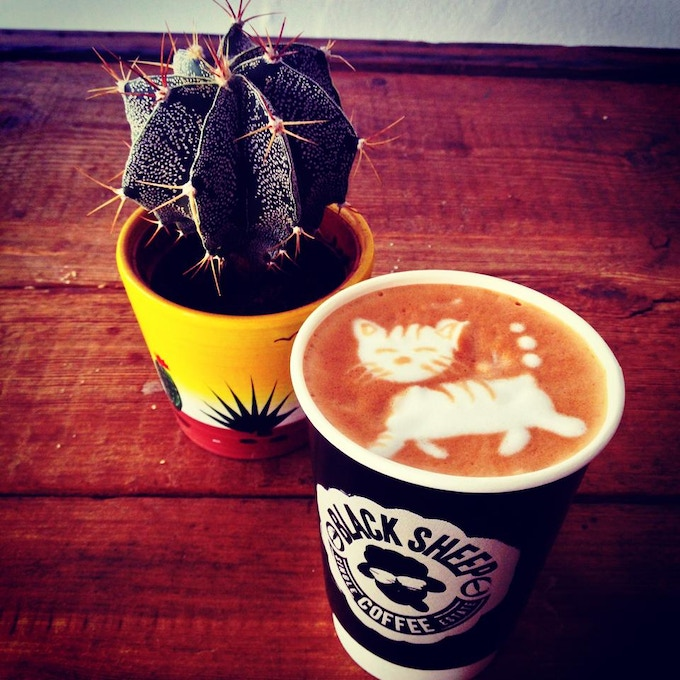 """Black Sheep in my cup, white cat cross my path"""" - by Valerios"""