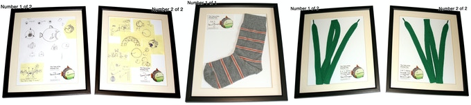 Framed, very limited edition sketches, shoelace seaweed and sock used to create fish in the book!