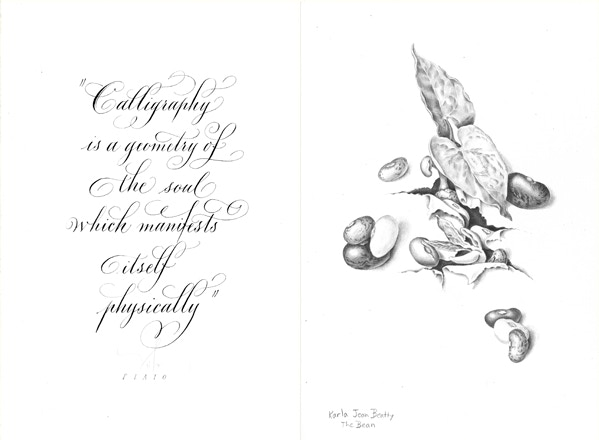 Practice Makes Perfect: A Botanical Illustration