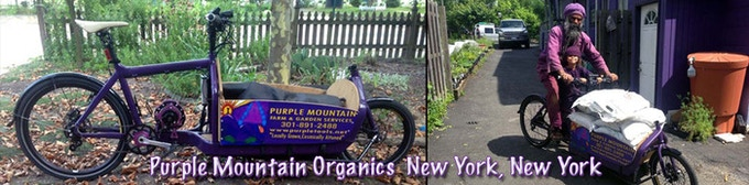 Custom color on Motor and Crank set was just one special feature for Purple Mountain Organics.