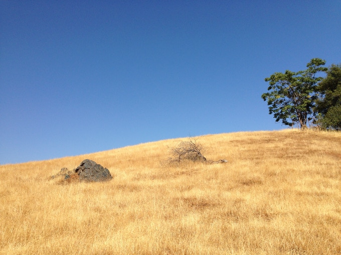 King Ranch in El Dorado County, California