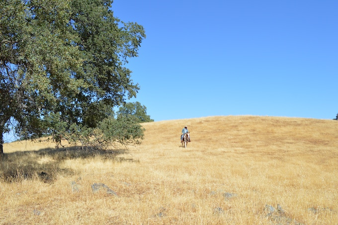 King Ranch in El Dorado County, California