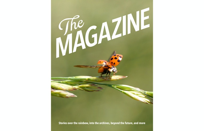 The Magazine: The Book (Year Two) working cover