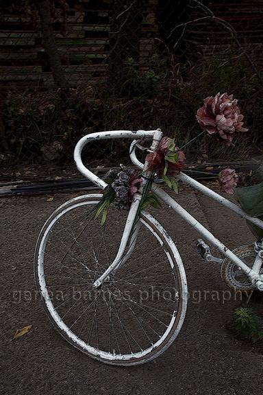 Ghost bike J1
