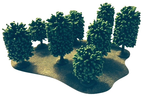 Realistic Oak Tree Set - Includes 8 Oak Trees and 1 Forest Base