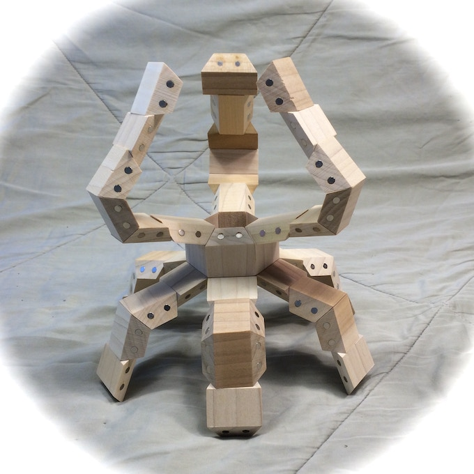 Model constructed with 48 HexTetra FACETS