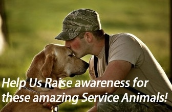 Our veterans rely on their support.