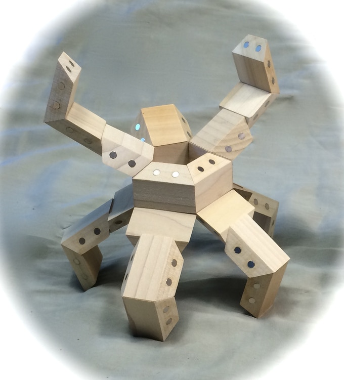Model constructed with 24 HexTetra FACETS