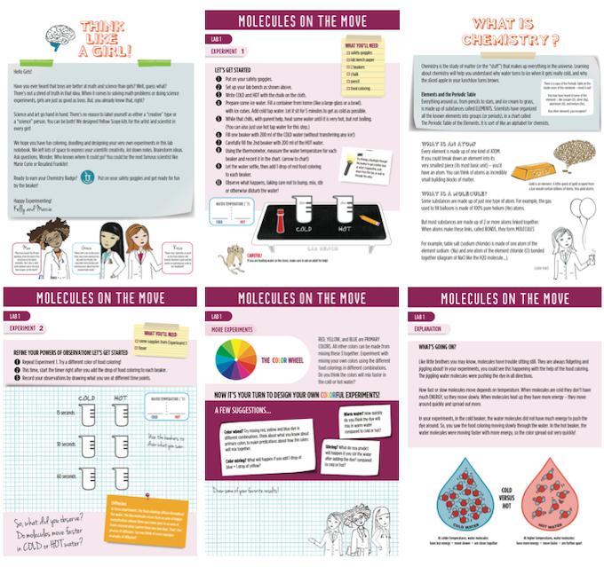 Lab Notebook Excerpts