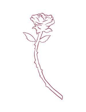 Design of the rose tattoo!