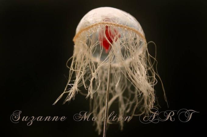 MIRA artist's practical jellyfish models