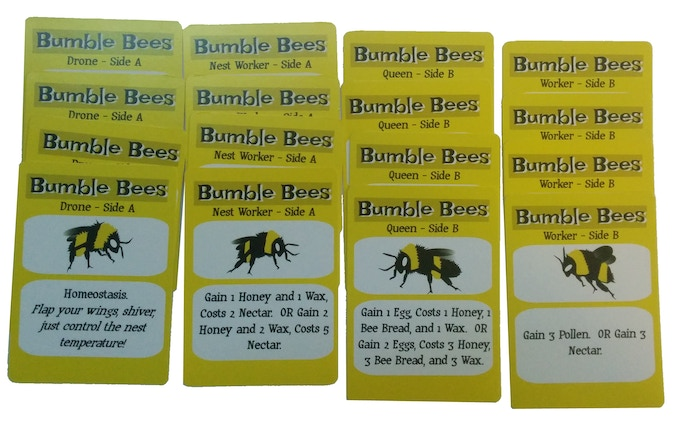 Four cards each of Bee, with unique abilities.  All double sided.  All players will control one of each type.