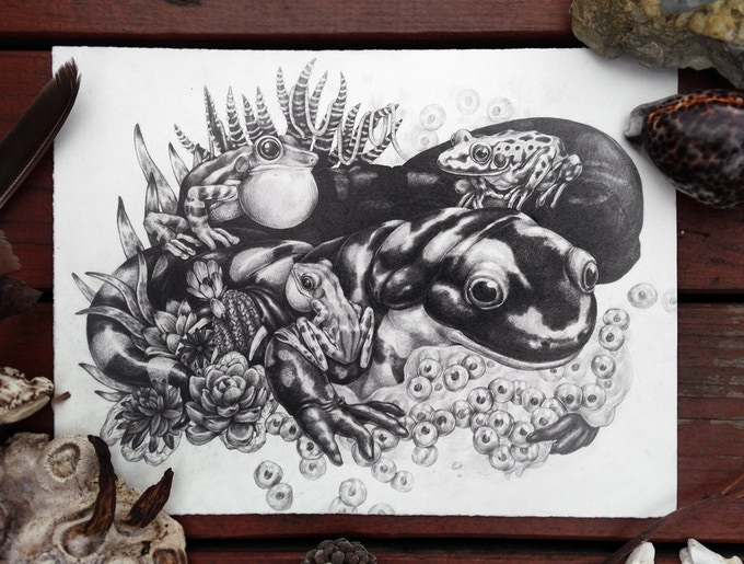 """Salamander"" - 6/6 of the originals available as a $950 or more reward. (This image also appears in the book!)"