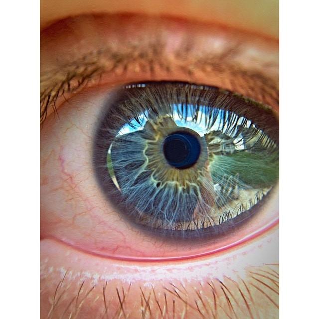 Eye 4x Instagram Credit: @phobalob