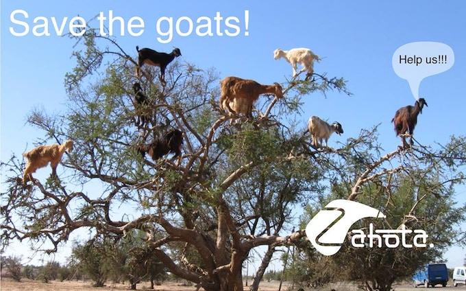 Zahota, the goat free alternative to bota bags.