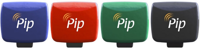Help us choose the colors for Pip!
