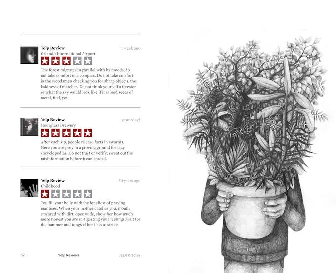 Yelp reviews by J. Bradley and art by Stefan Zsaitsits