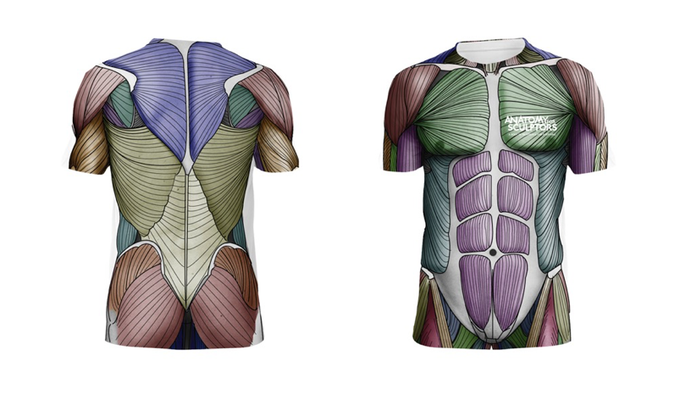 "The Anatomy for Sculptors ""Muscle"" Tee Shirt"