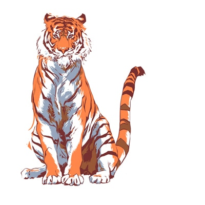 We hired a designer at Reebok to design our own tiger. Copyright QUAGGA Inc.
