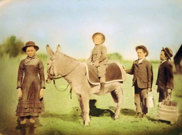 Johnny (sitting on the mule) a few months before his death in 1885