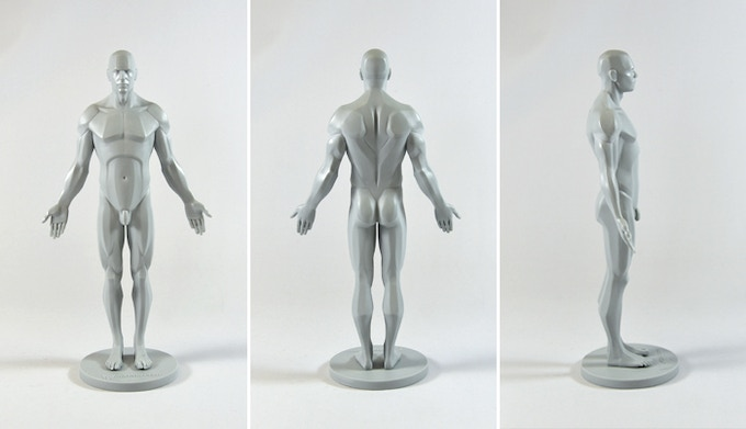 3dtotal Anatomical Collection: SIX New Reference Figures! by