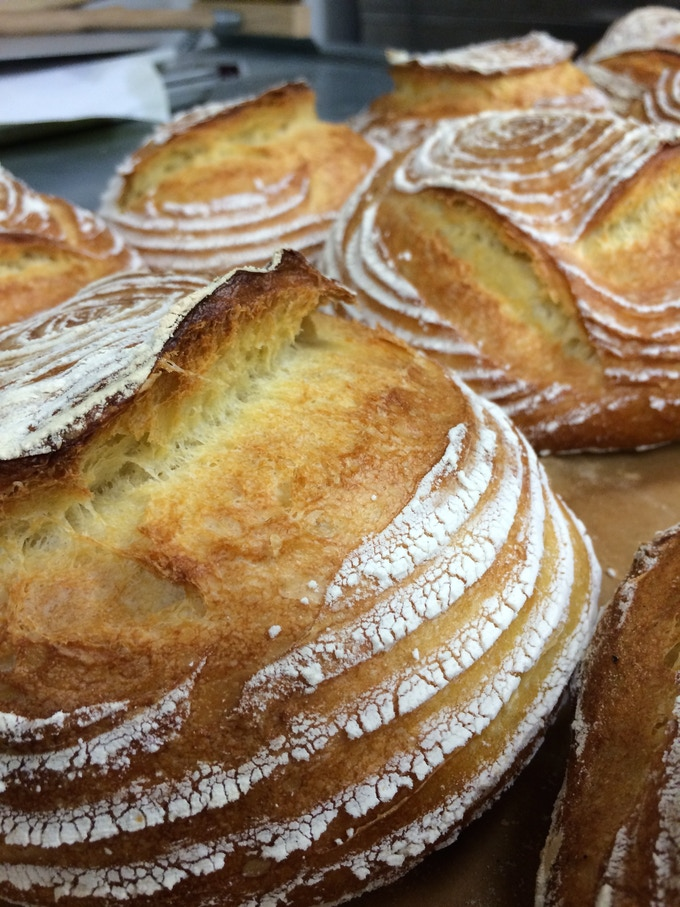 Duck Island Sour Dough Bread