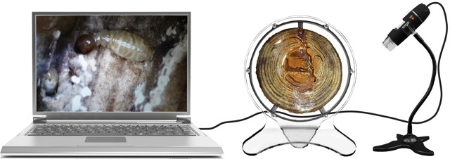 The USB electronic microscope connects to your computer and comes with driver software for Windows and Mac10.5 and above. It also allows the taking of stills and videos. A cool tool that also opens up infinite discovery opportunities in the micro world.