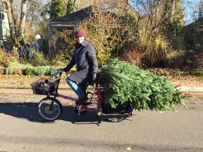 Missy MacRhodes brings home her family Christmas tree on her Haul-a-Day