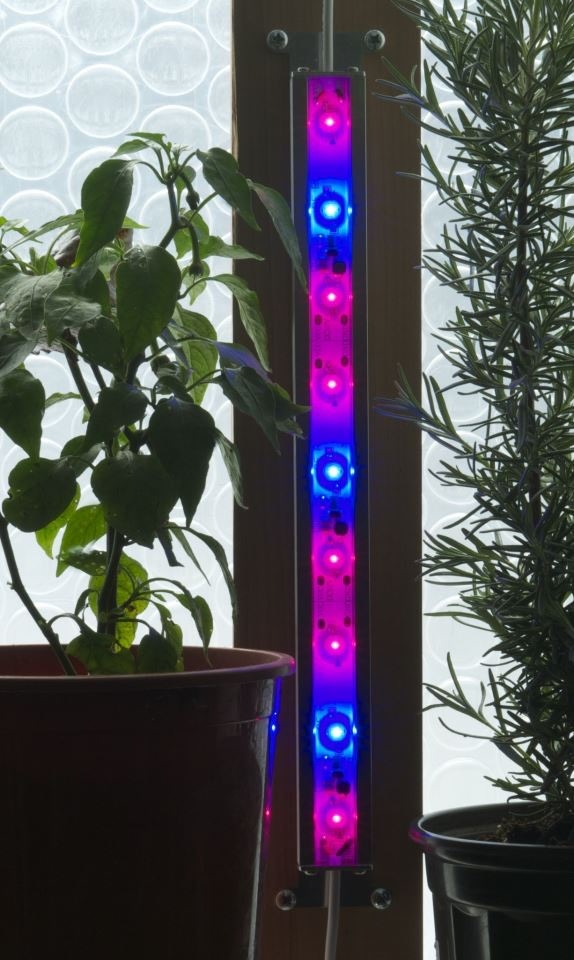 Vertical mounting of LED grow lights on interior corners allow low-power, super-bright illumination even for bushy plants