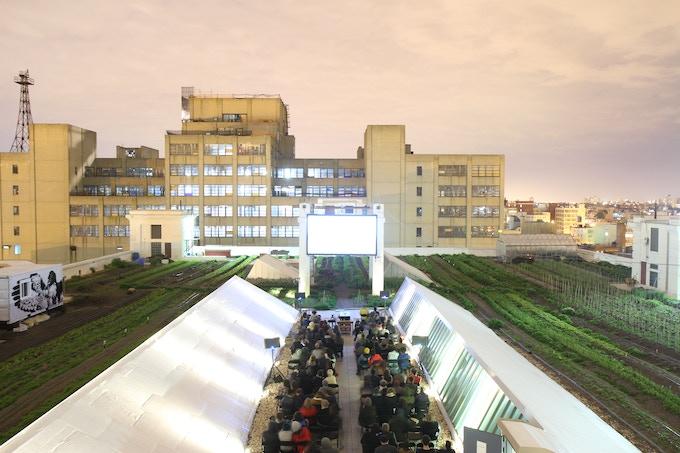 Rooftop Films at Brooklyn Grange