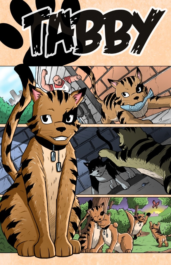 Coloured Cover for Tabby