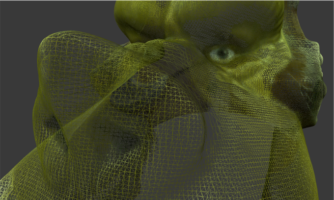 Close-up of the Orc Triangle Mesh