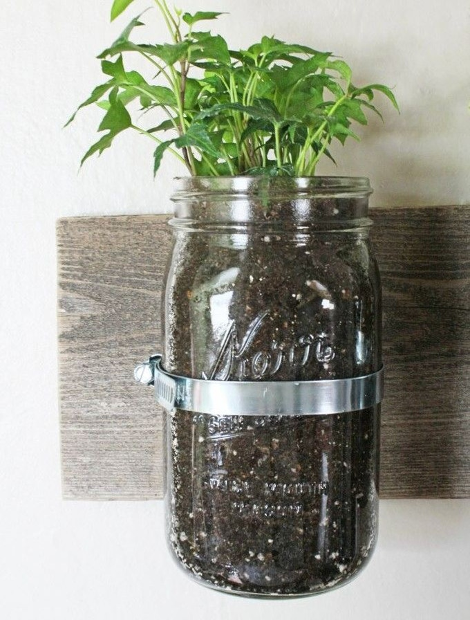 Single-jar wall mount hand-crafted from reclaimed lumber