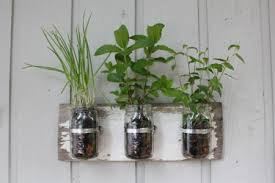 Three-jar horizontal wall mount hand-crafted from reclaimed lumber