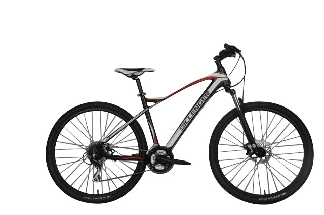Dillenger Blue Tooth Sprinter 29er Electric Bikes