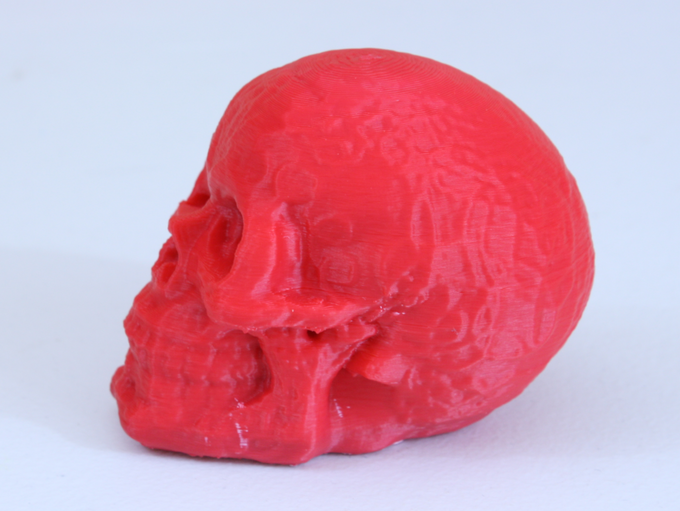 3D Print of the Skull Scan