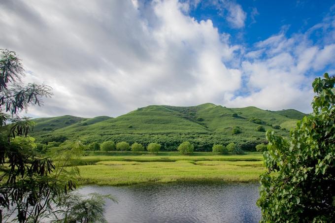 Hamakua Marsh - Our backyard