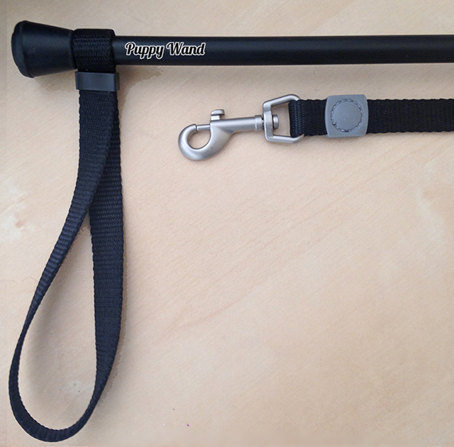 Puppy Wand World S Best Dog Leash By Philip Byrne