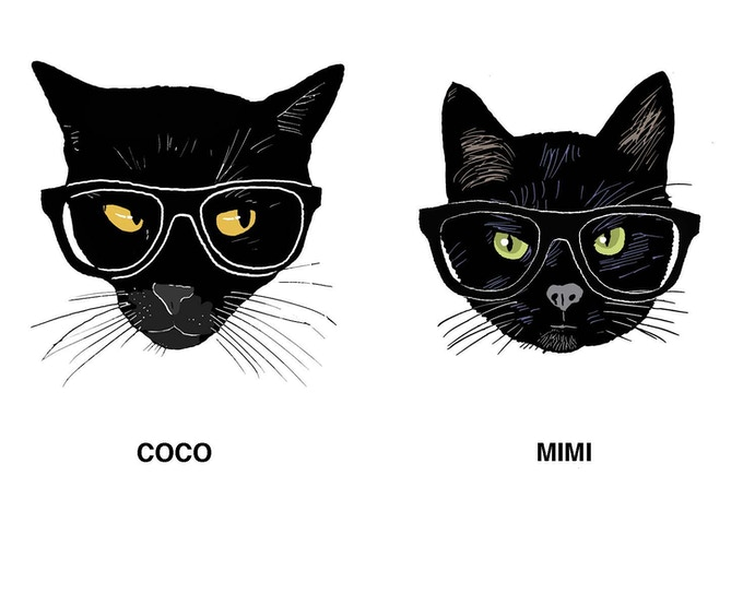 Coco Is Not Mimi