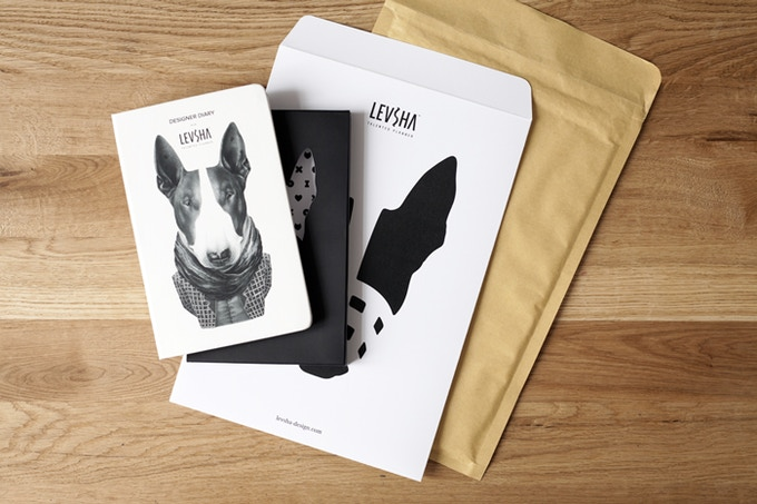 Beautiful stylish packaging for your Levsha Designer Diary.