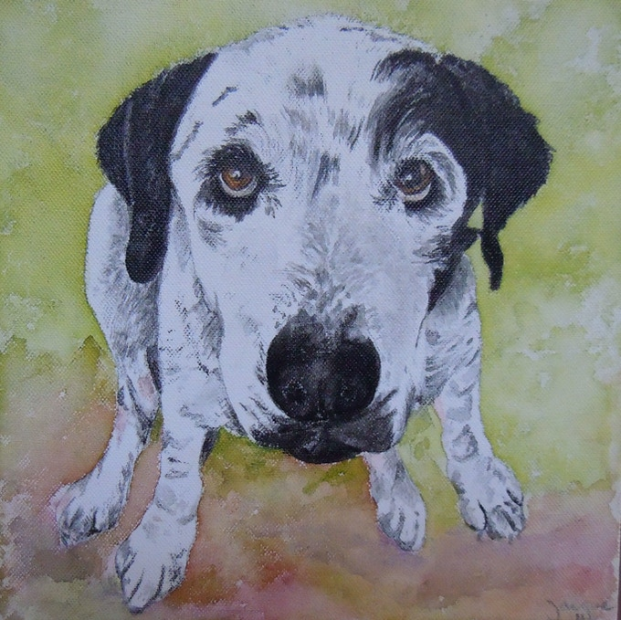 "Example of 9""x12"" pet portrait."