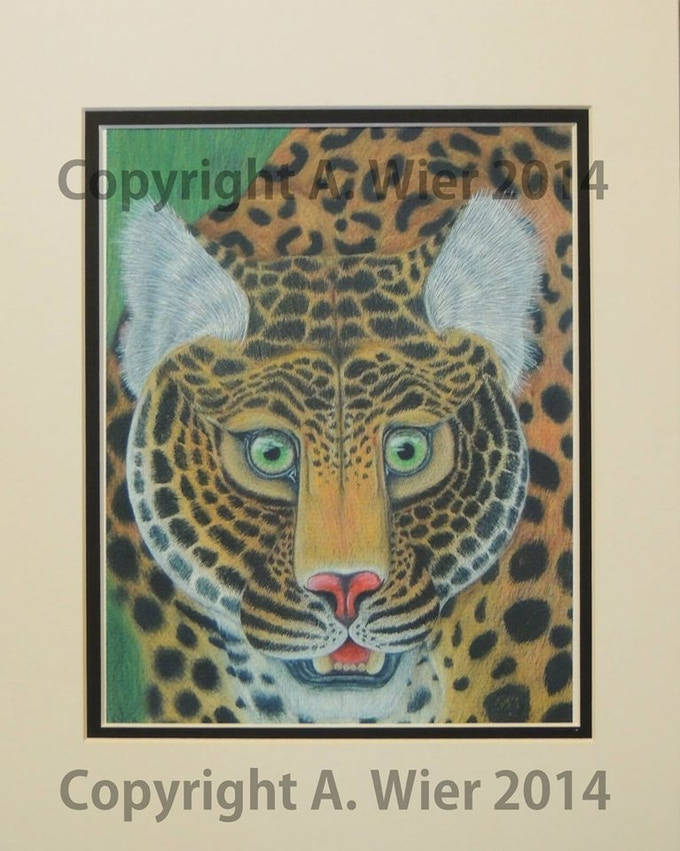"""Leopard Study #1"" Digital Print, Prismacolor Colored Pencil on Heavy Textured Paper, A. Wier 2014"