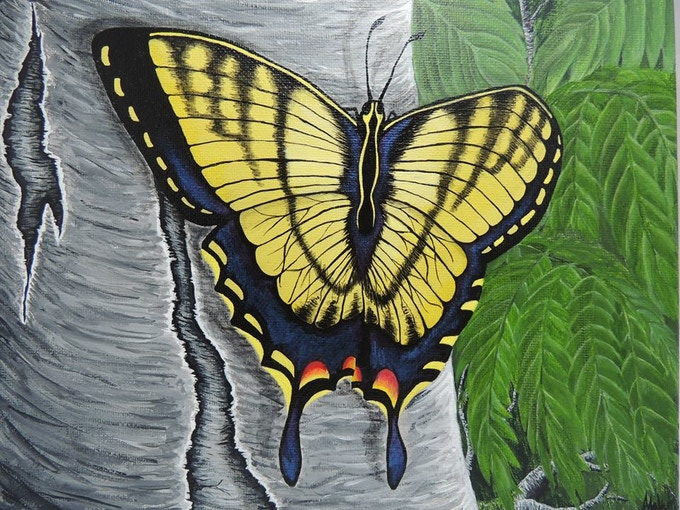 Butterfly on Birch, A. Wier 2014