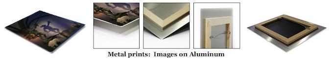 Prints on Metal, see details below.