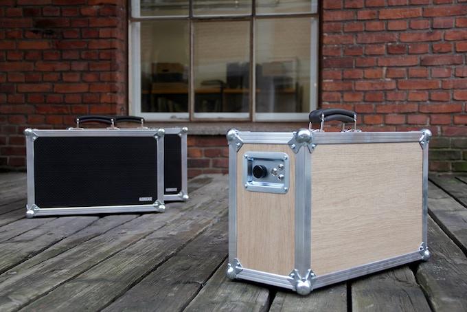The Audiocase in oak veneer