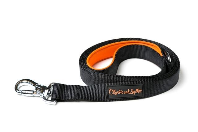 orange handled leash