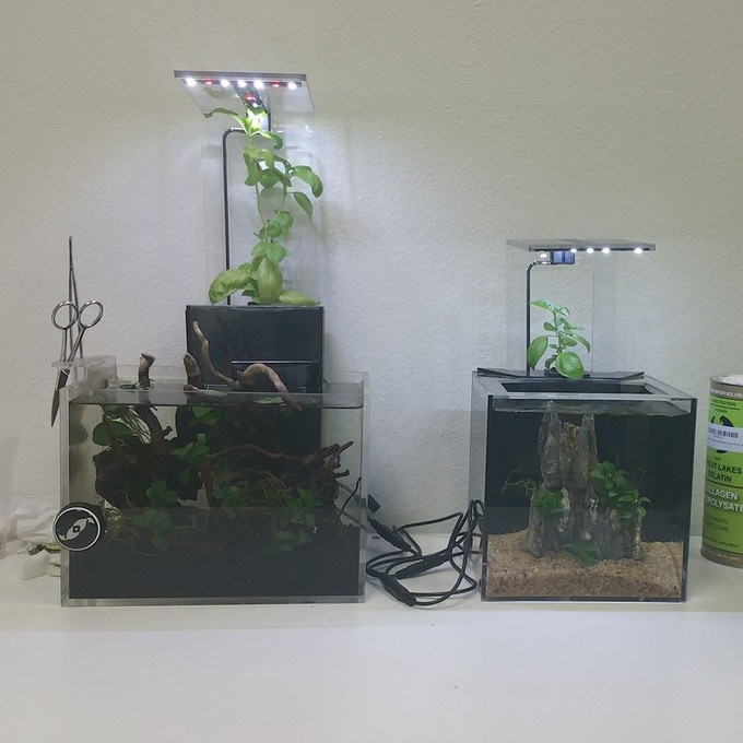 Original EcoQube (left) and EcoQube C (right)