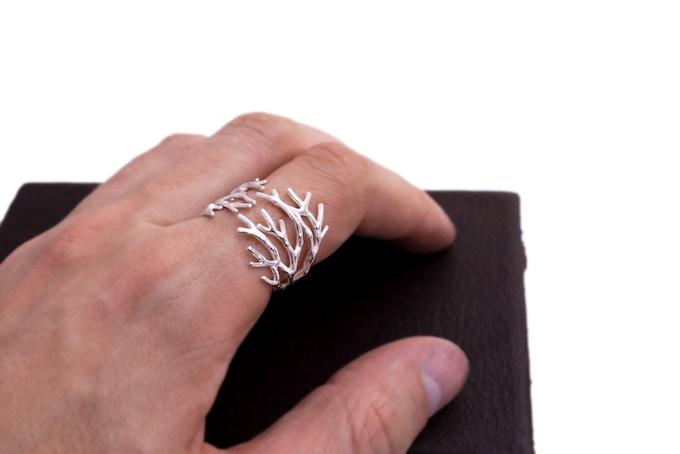 Complex Dendrite Ring
