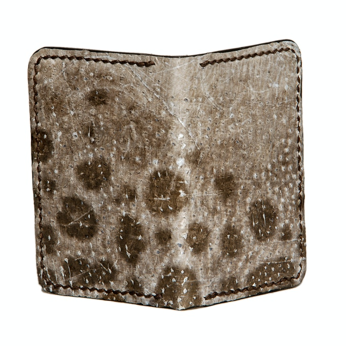 Slim Jim wolffish fish leather card wallet