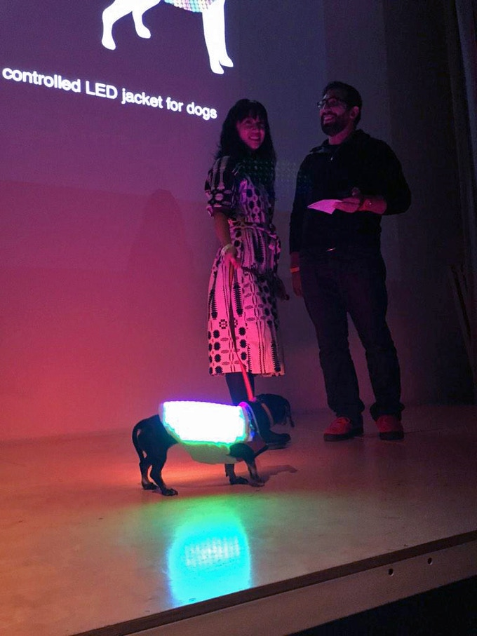 Our early preview of Disco Dog at New Inc's Demo Day at the New Museum.